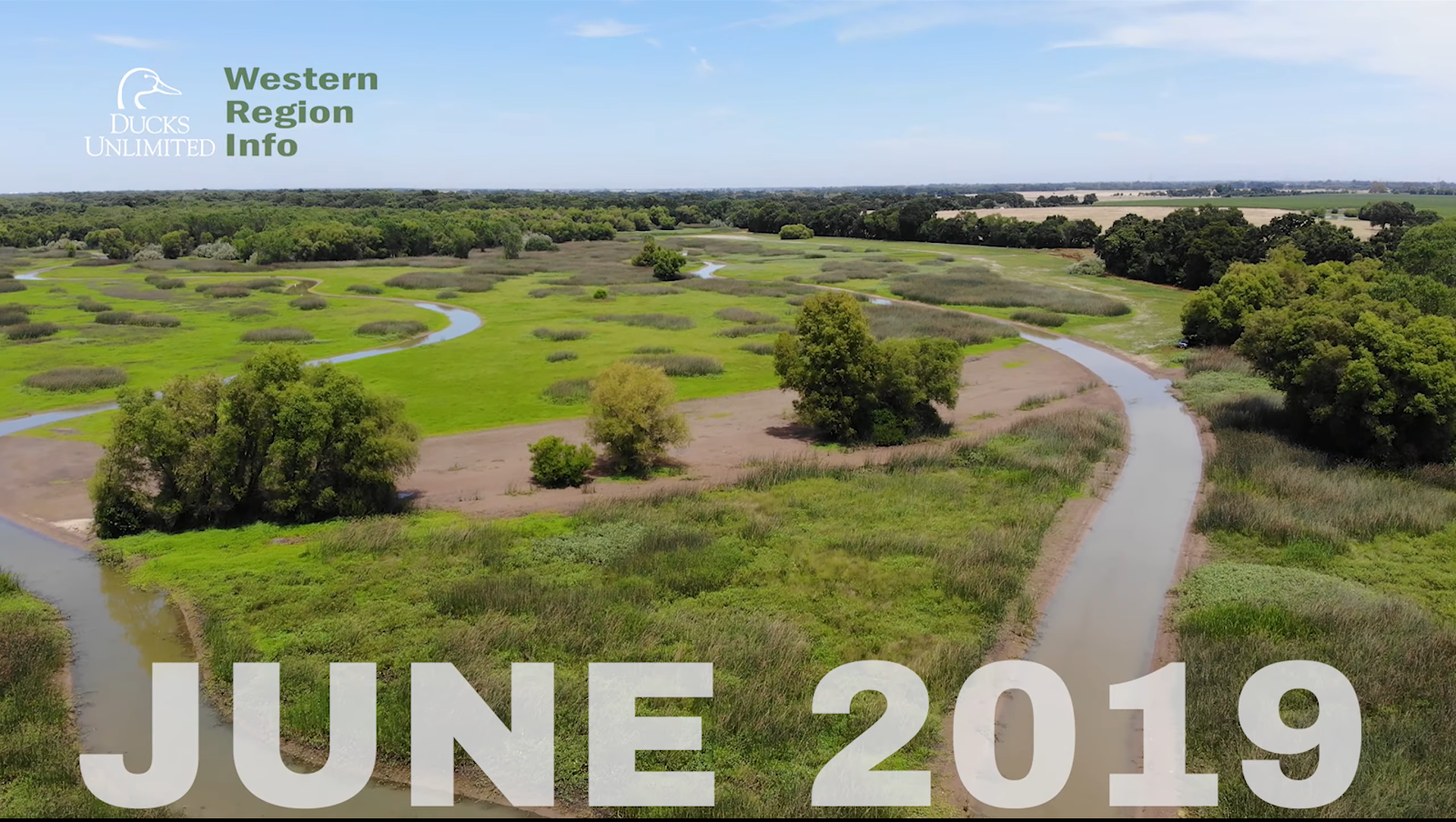 aerial view of Cougar Wetlands Project June 2019